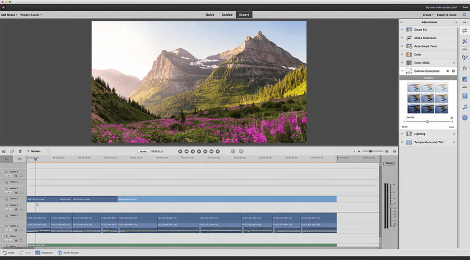 Adobe Premiere Elements expert interface