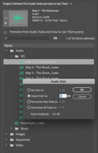 Adobe Premiere Pro Audio