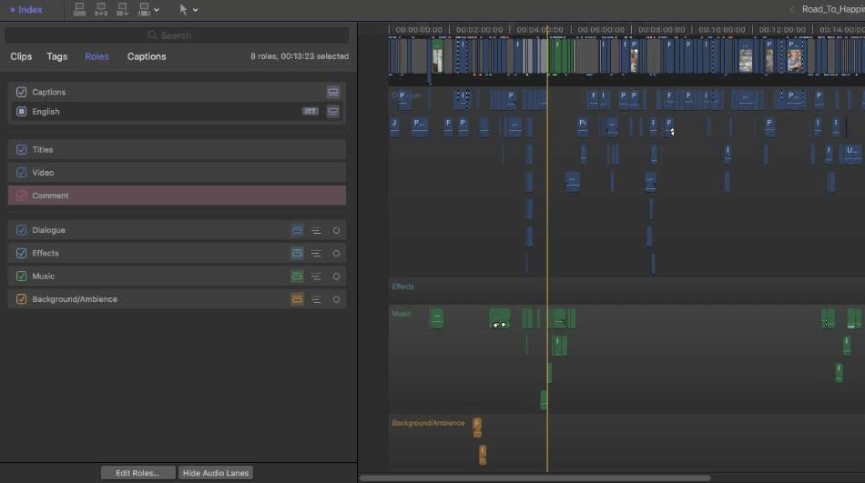 Final Cut Pro Assign Audio Roles