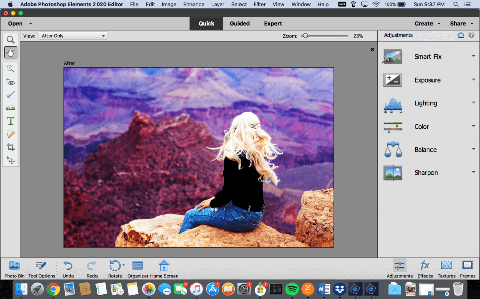 Adobe Photoshop Elements Quick Interface