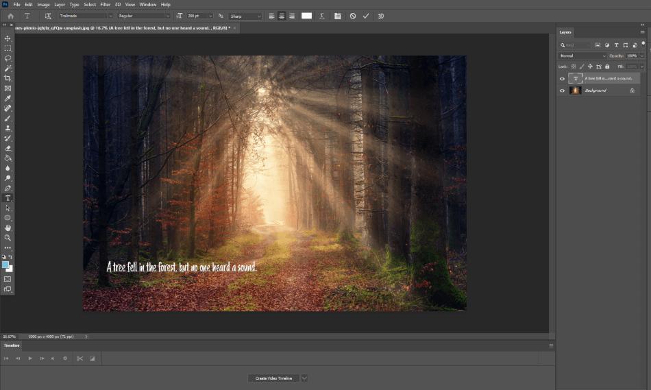Adobe Photoshop Text Tool