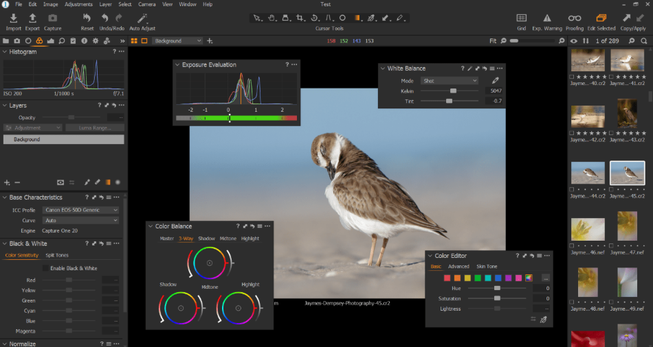 Capture One Interface