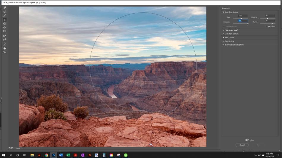 Adobe Photoshop Liquify