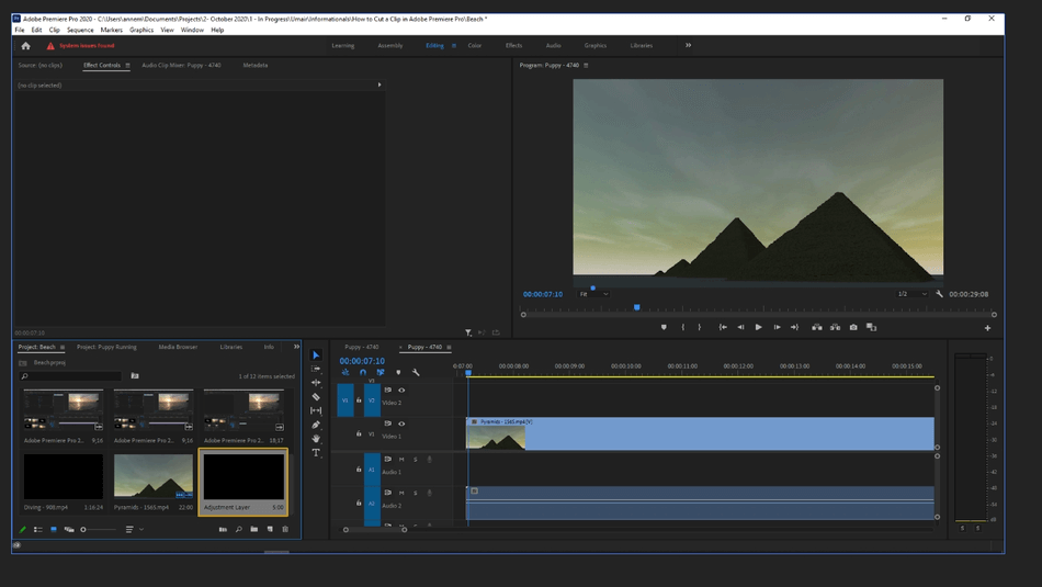 How to Add an Adjustment Layer in Adobe Premiere Pro 3