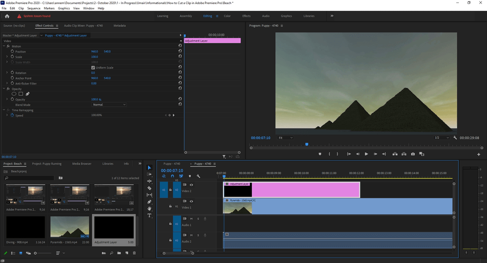 How to Add an Adjustment Layer in Adobe Premiere Pro 5