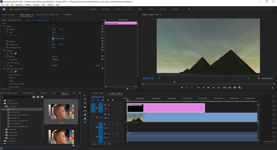 How to Add an Adjustment Layer in Adobe Premiere Pro 8