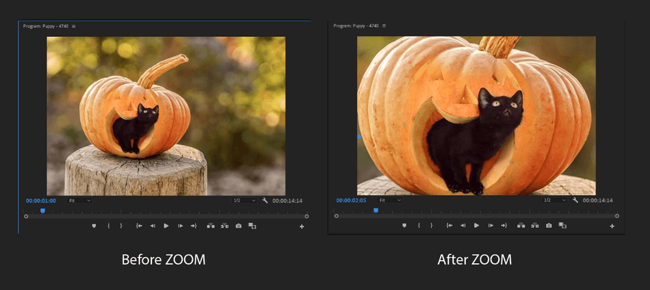 How to Create a Zoom In Effect in Adobe Premiere Pro 1