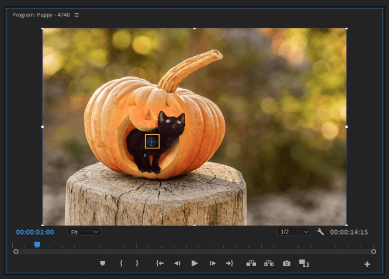 How to Create a Zoom In Effect in Adobe Premiere Pro 3