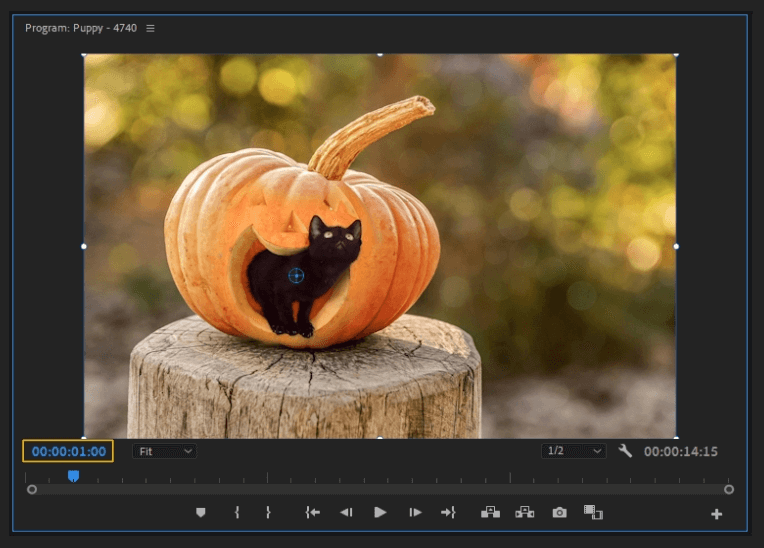 How to Create a Zoom In Effect in Adobe Premiere Pro 4