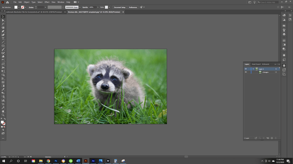 How to Crop an Image in Illustrator 1