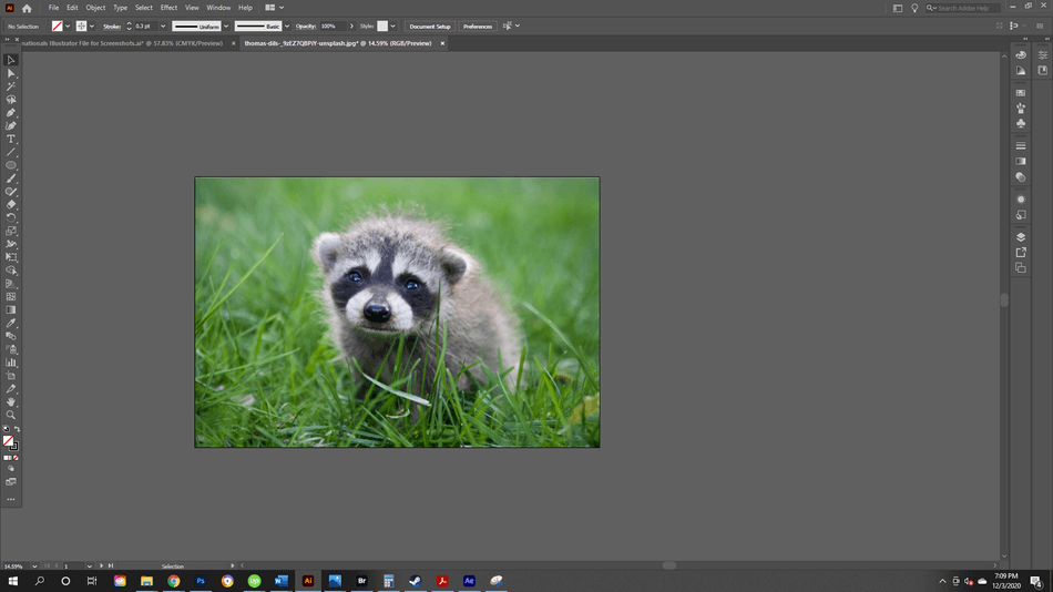 How to Crop an Image in Illustrator 11