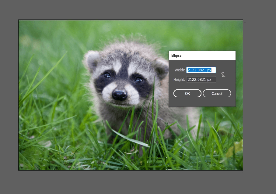 How to Crop an Image in Illustrator 13