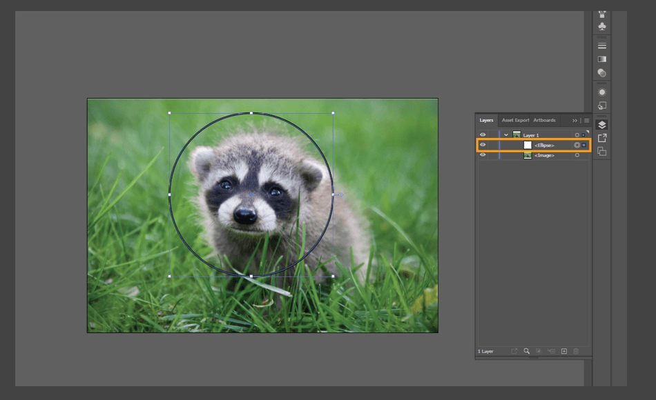 How to Crop an Image in Illustrator 16