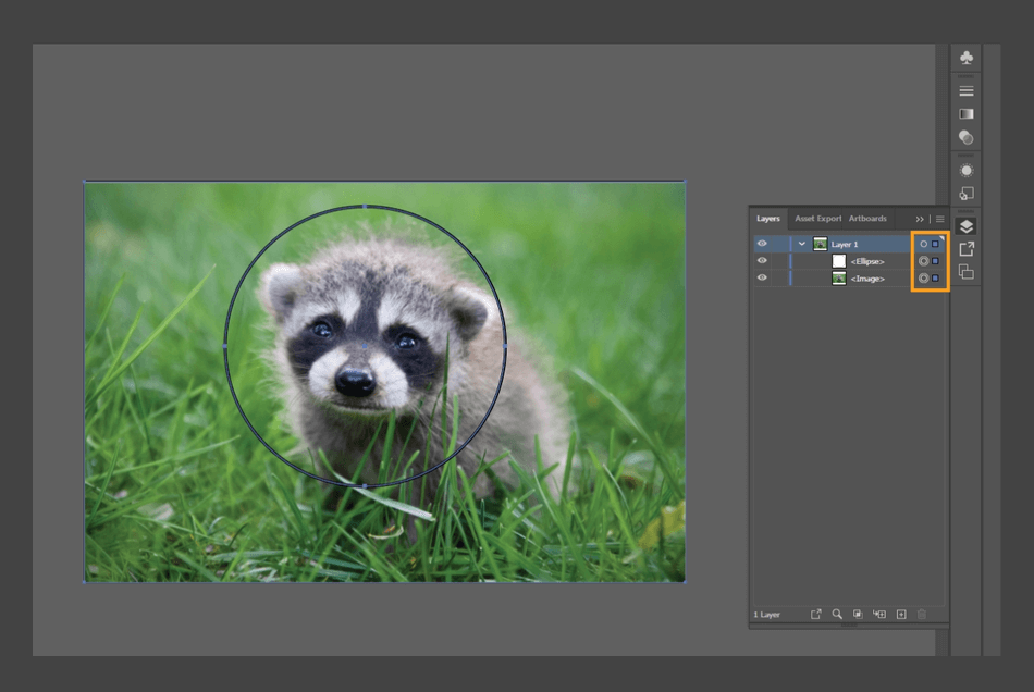 How to Crop an Image in Illustrator 17