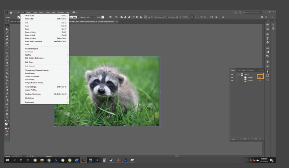 How to Crop an Image in Illustrator 23