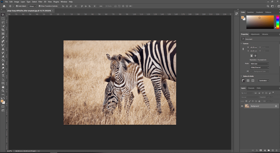 How to Crop in Photoshop 1