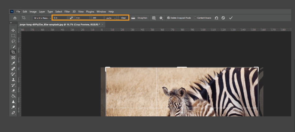How to Crop in Photoshop 10