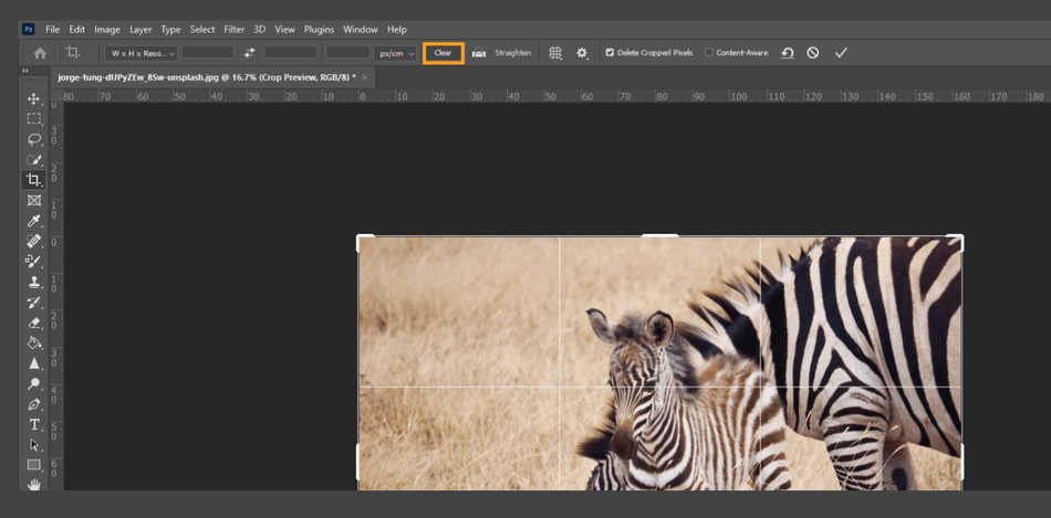 How to Crop in Photoshop 12