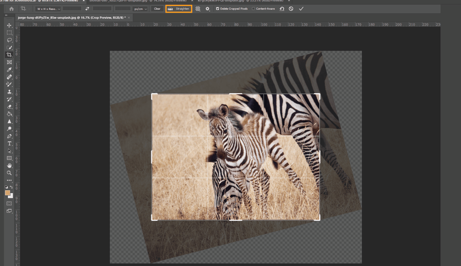 How to Crop in Photoshop 13