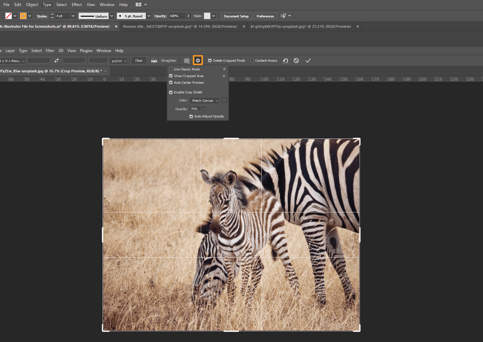How to Crop in Photoshop 15