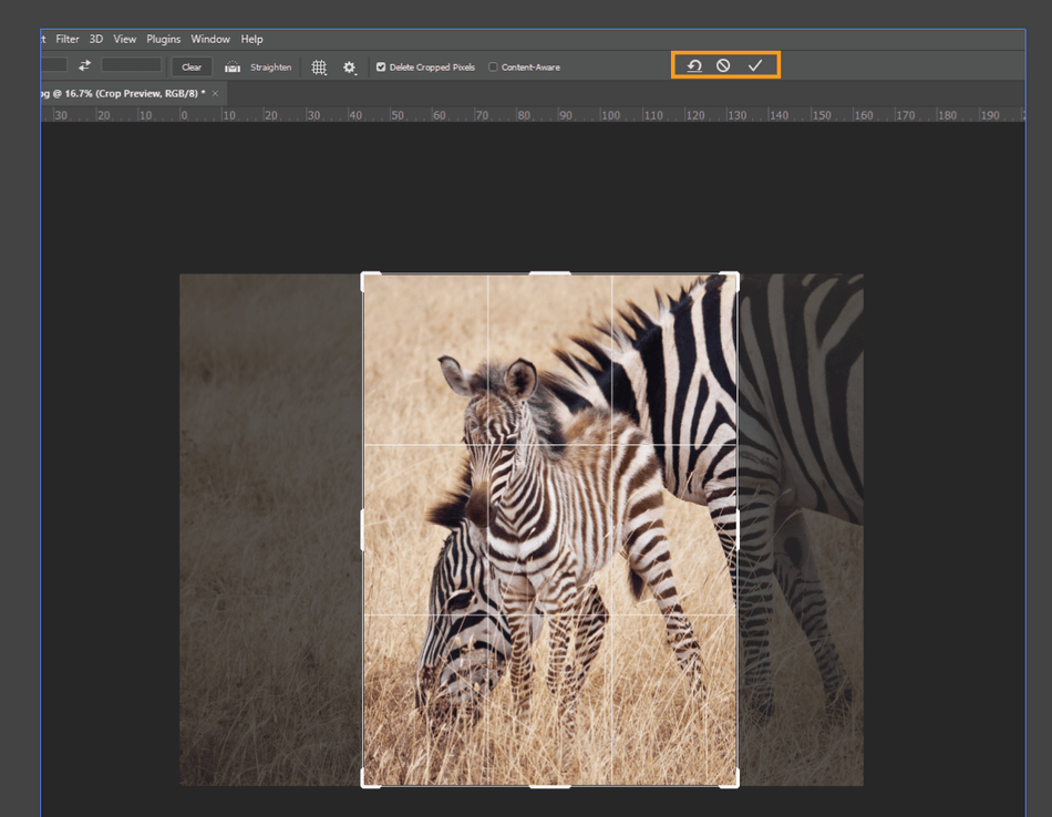 How to Crop in Photoshop 4