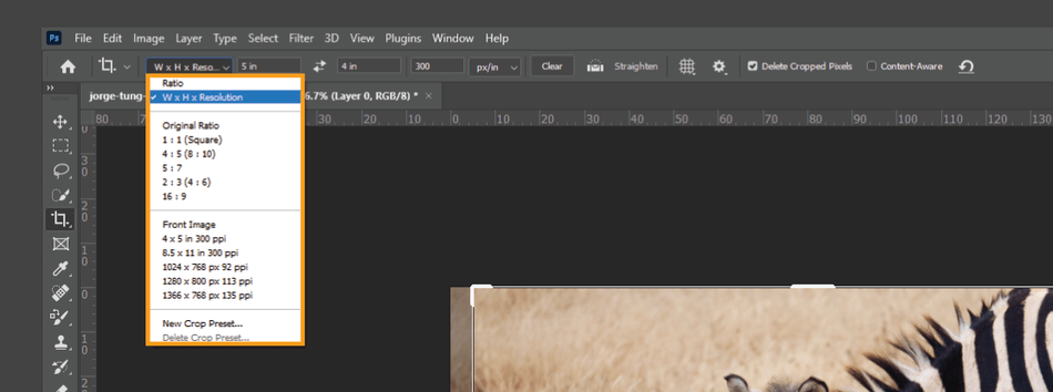 How to Crop in Photoshop 9