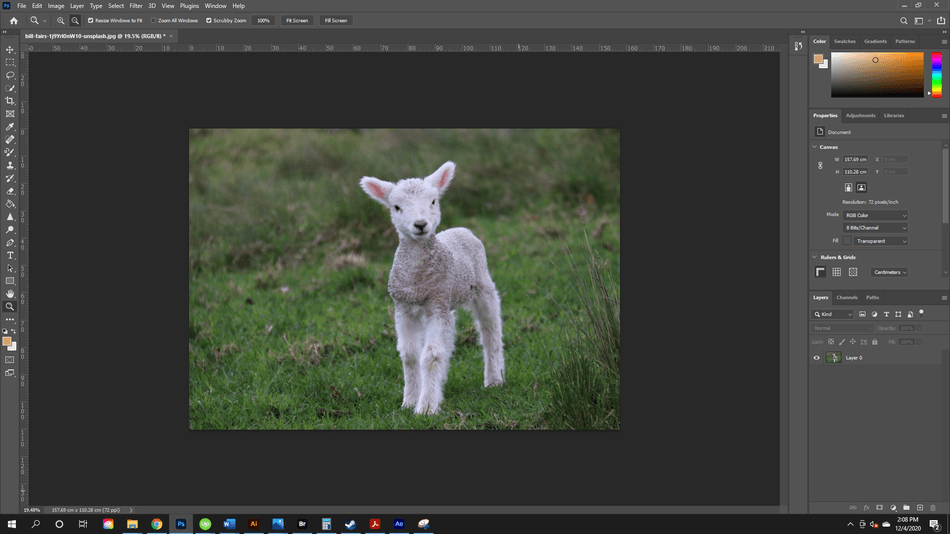 How to Flip an Image in Photoshop 2