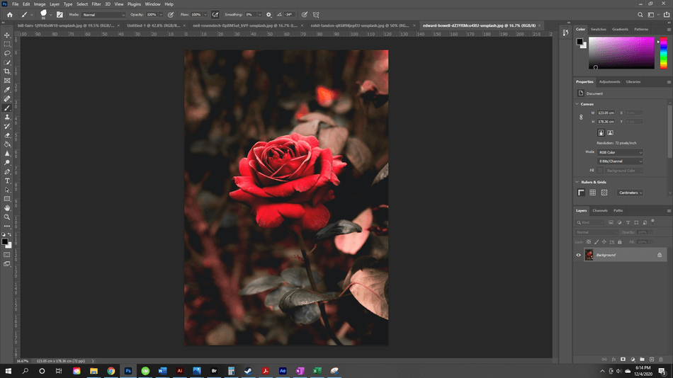 How to Flip an Image in Photoshop 22