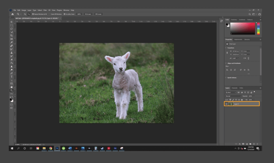 How to Flip an Image in Photoshop 3
