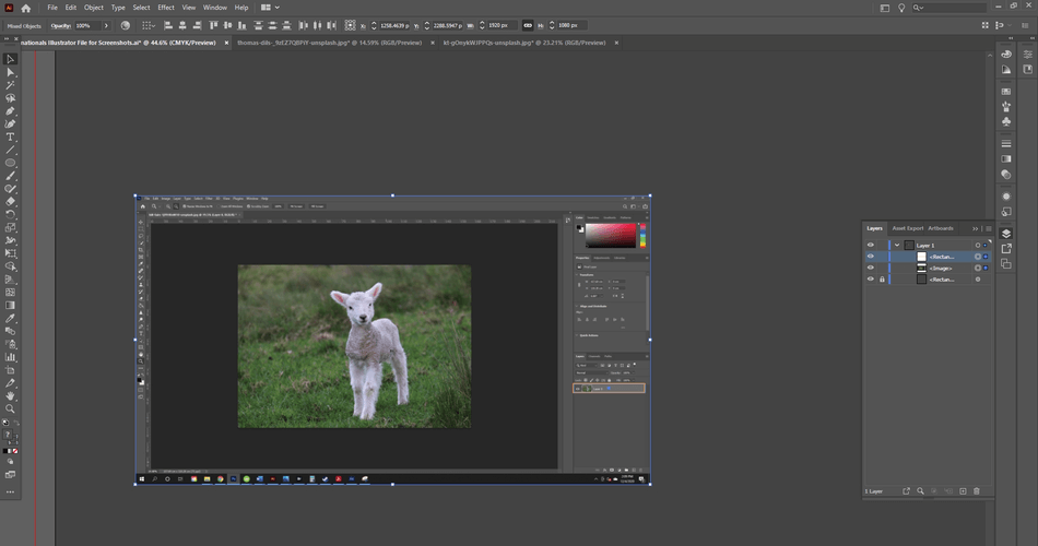 How to Flip an Image in Photoshop 5