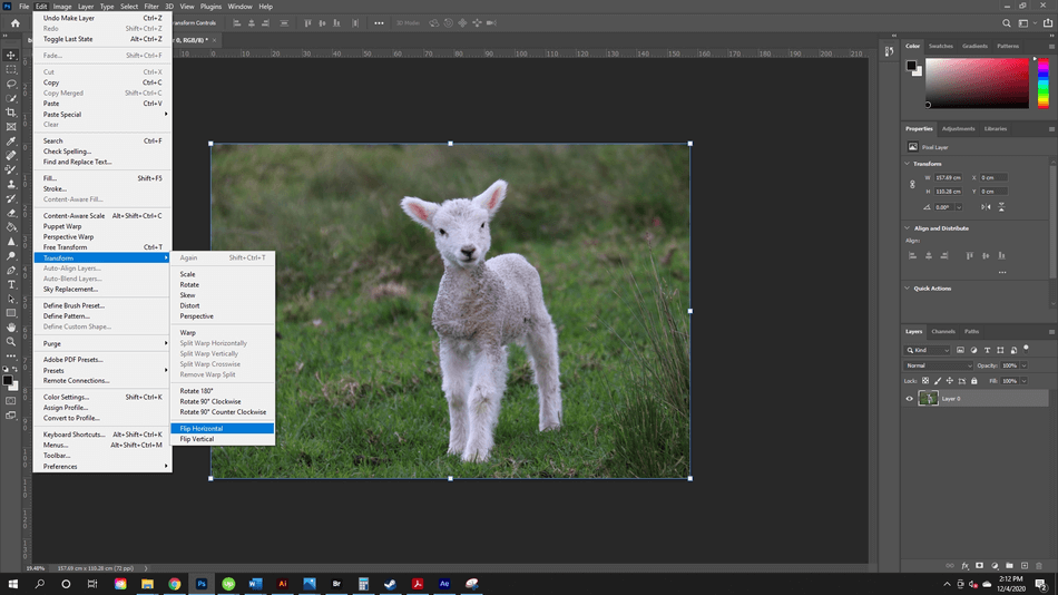 How to Flip an Image in Photoshop 6