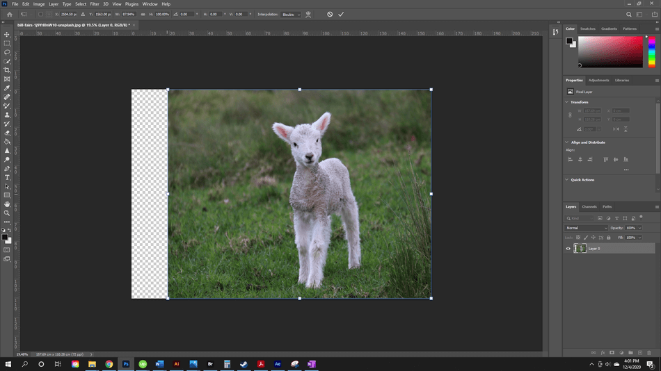 How to Flip an Image in Photoshop 8