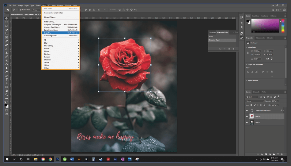 How to Resize a Layer in Photoshop 10