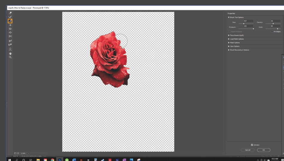 How to Resize a Layer in Photoshop 16