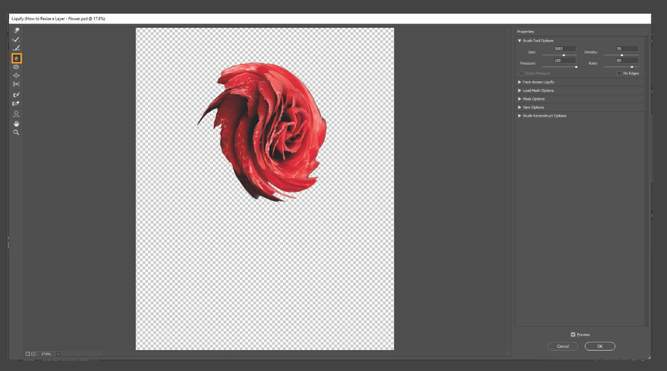 How to Resize a Layer in Photoshop 17