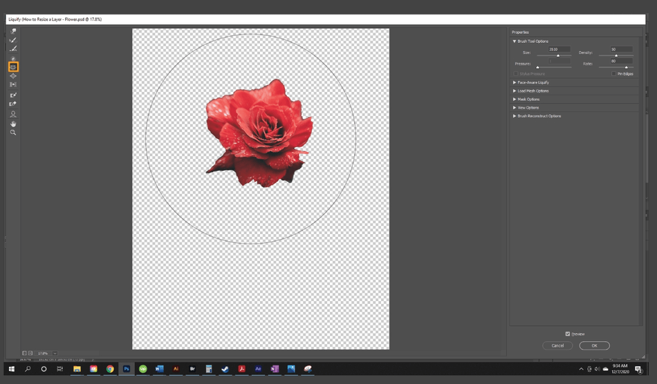 How to Resize a Layer in Photoshop 18