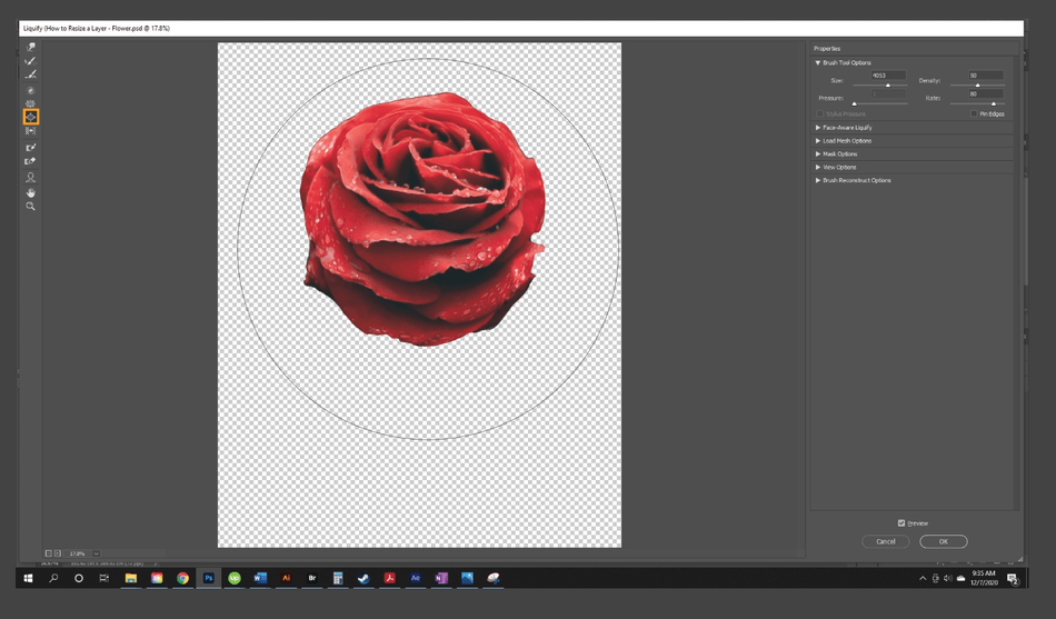 How to Resize a Layer in Photoshop 19