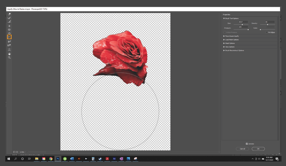 How to Resize a Layer in Photoshop 20