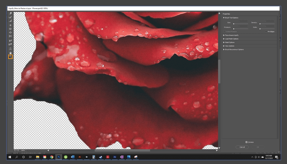 How to Resize a Layer in Photoshop 25
