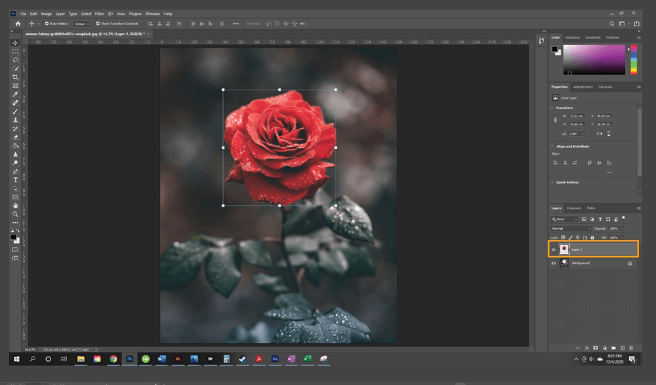 How to Resize a Layer in Photoshop 3