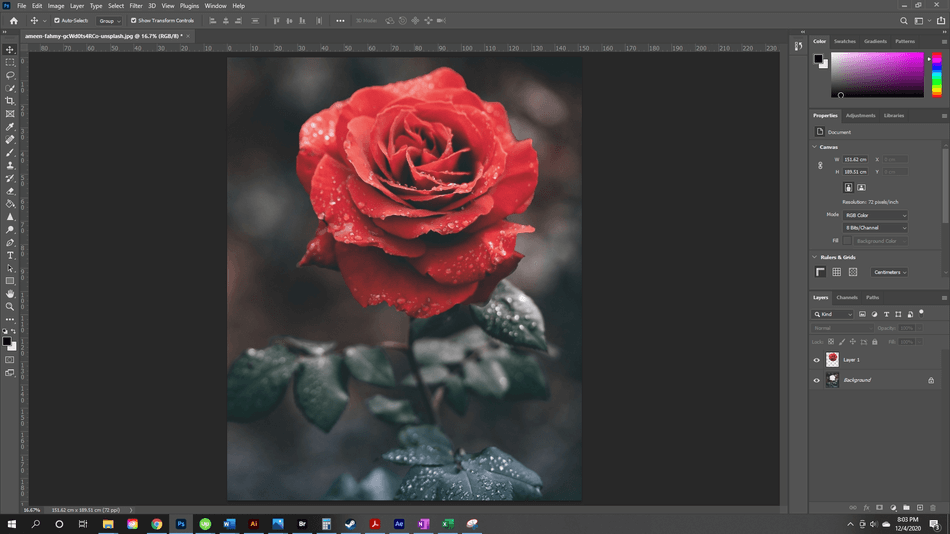 How to Resize a Layer in Photoshop 4