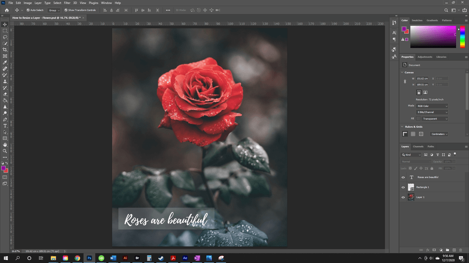 How to Resize a Layer in Photoshop 58