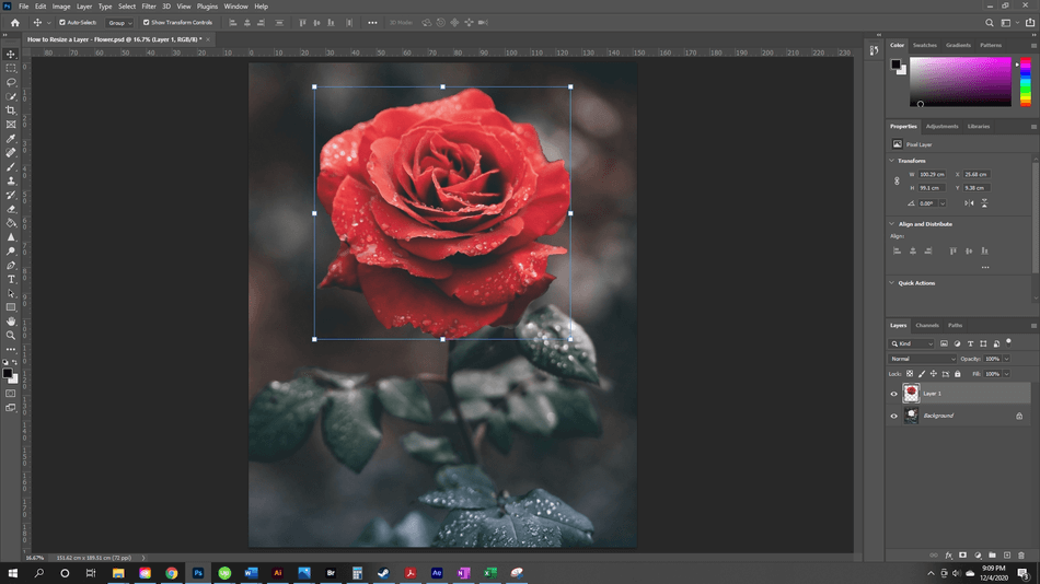 How to Resize a Layer in Photoshop 7