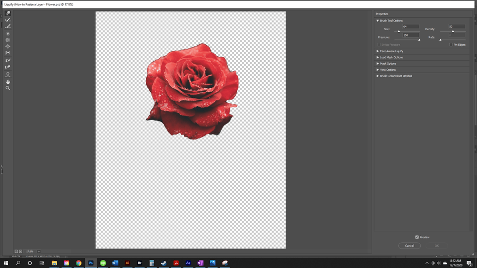 How to Resize a Layer in Photoshop 8