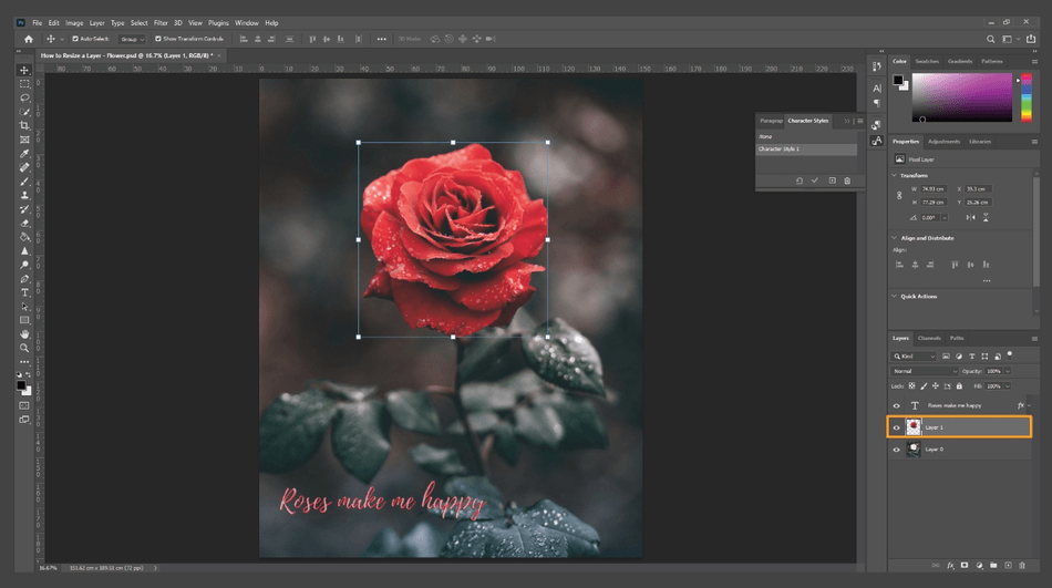 How to Resize a Layer in Photoshop 9