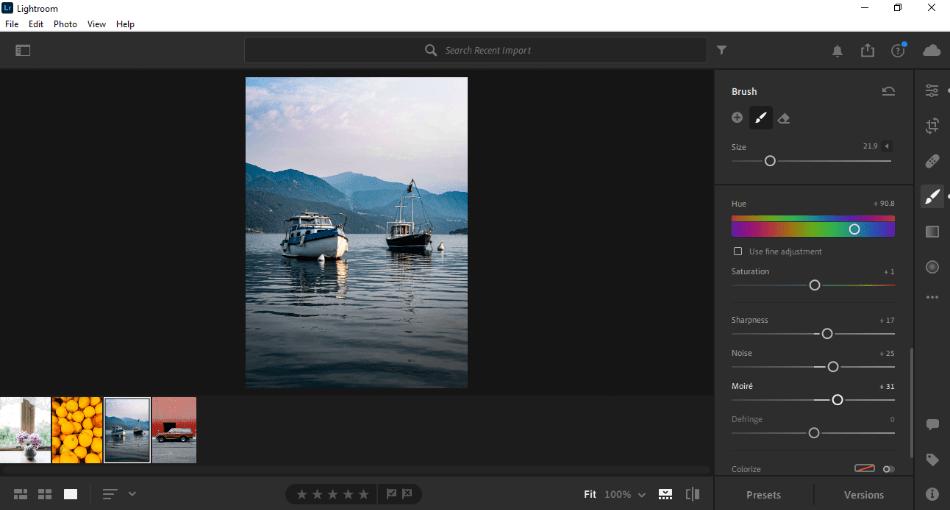 Adobe Lightroom using brush on image