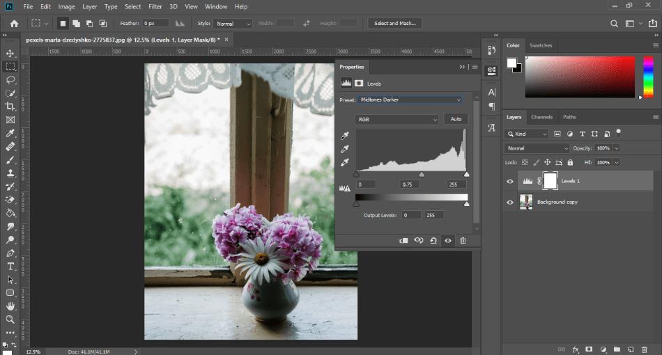 Adobe Photoshop levels