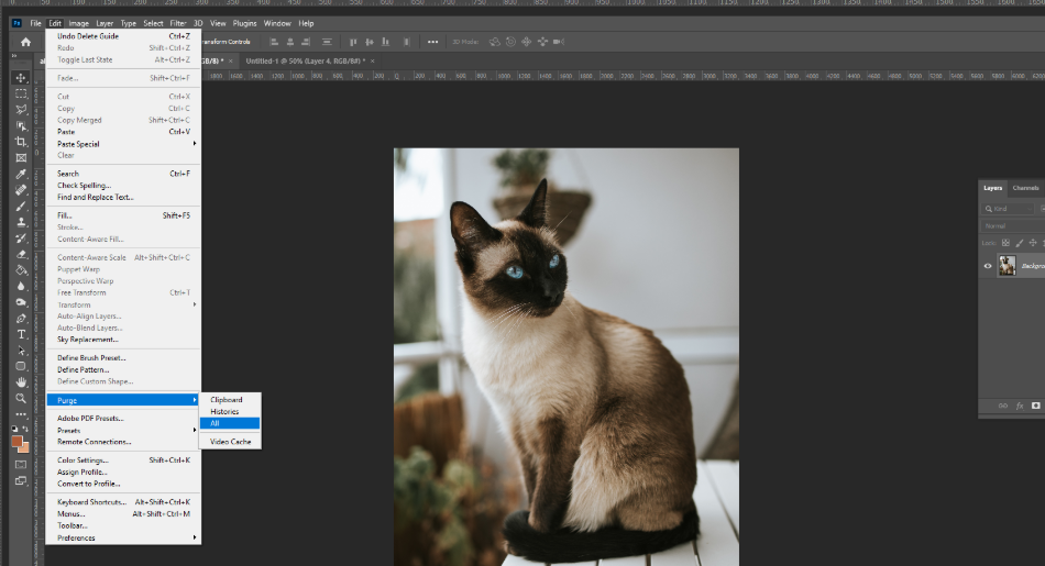 Delete Cache or Temp Files from Photoshop 1