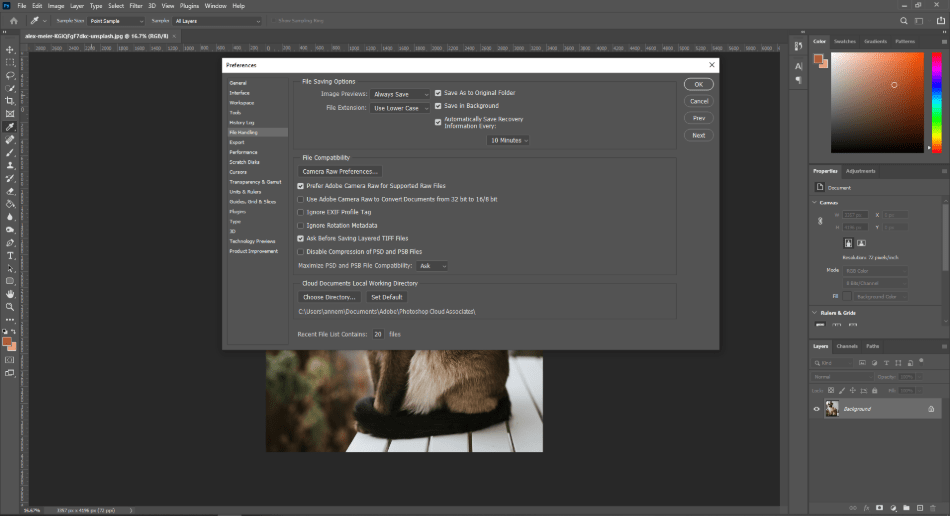 Disable the Auto Recovery Feature in Photoshop